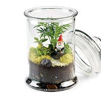 Varázslatos minikertek üvegben