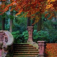 Gyönyörű őszi kertek