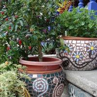 Mozaik a kertben - avagy dekoráld a kerted