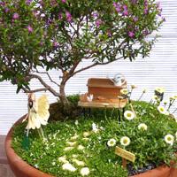 Tündérkertek növényei: japánmirtusz