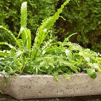 Egyszerű kaspók az egyedi kertért, teraszért