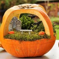 Halloween témájú minikertek