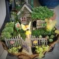Tavaszi tennivalók a minikertekben