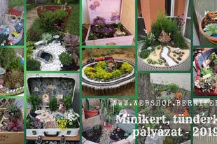 Minikert, tündérkert pályázat 2019 nyertesei
