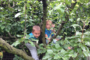 Vonjuk be a gyerekeket is a kertészkedésbe!