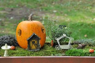 Őszi kiskertem