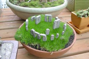 Különleges minikertek a kertben