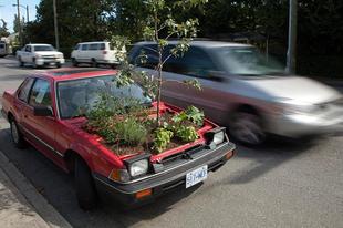Minikert nemcsak autósoknak