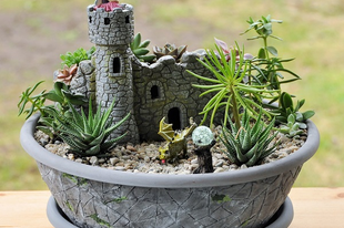 Így készült a sárkányos kert...