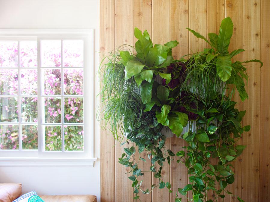 1-lwp-indoor-livingwall.jpg
