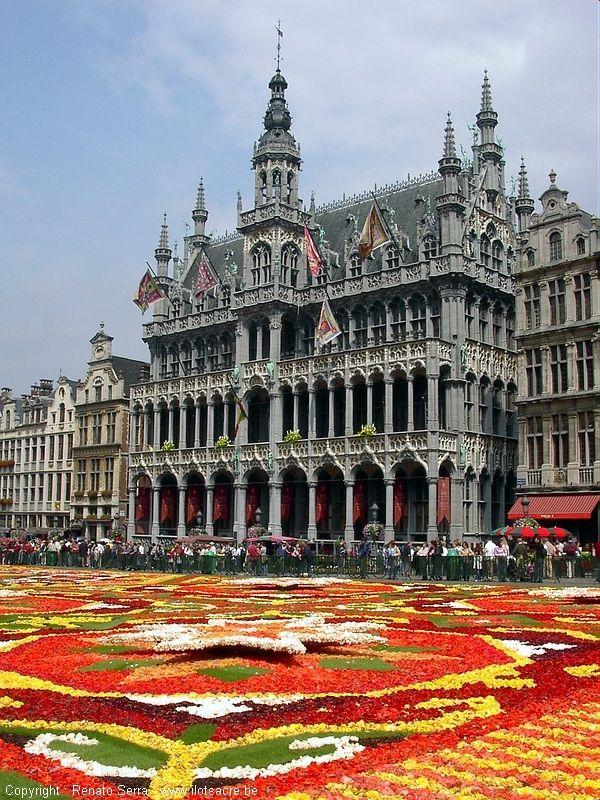 flowercarpet.jpg