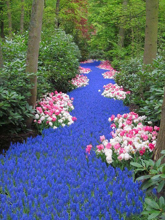 spring-flowerbed.jpg
