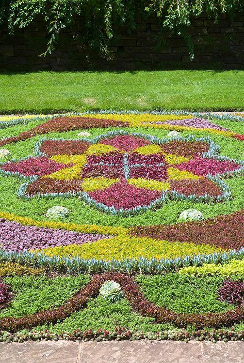 succulent-carpet.jpg