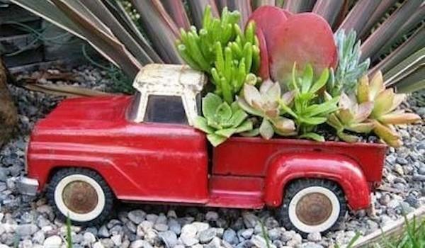 succulenttrucks-600x350.jpg