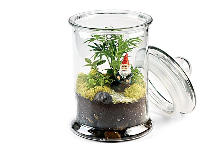 terrariums-gnomes.jpg