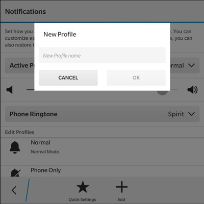 Custom_Profiles.jpg