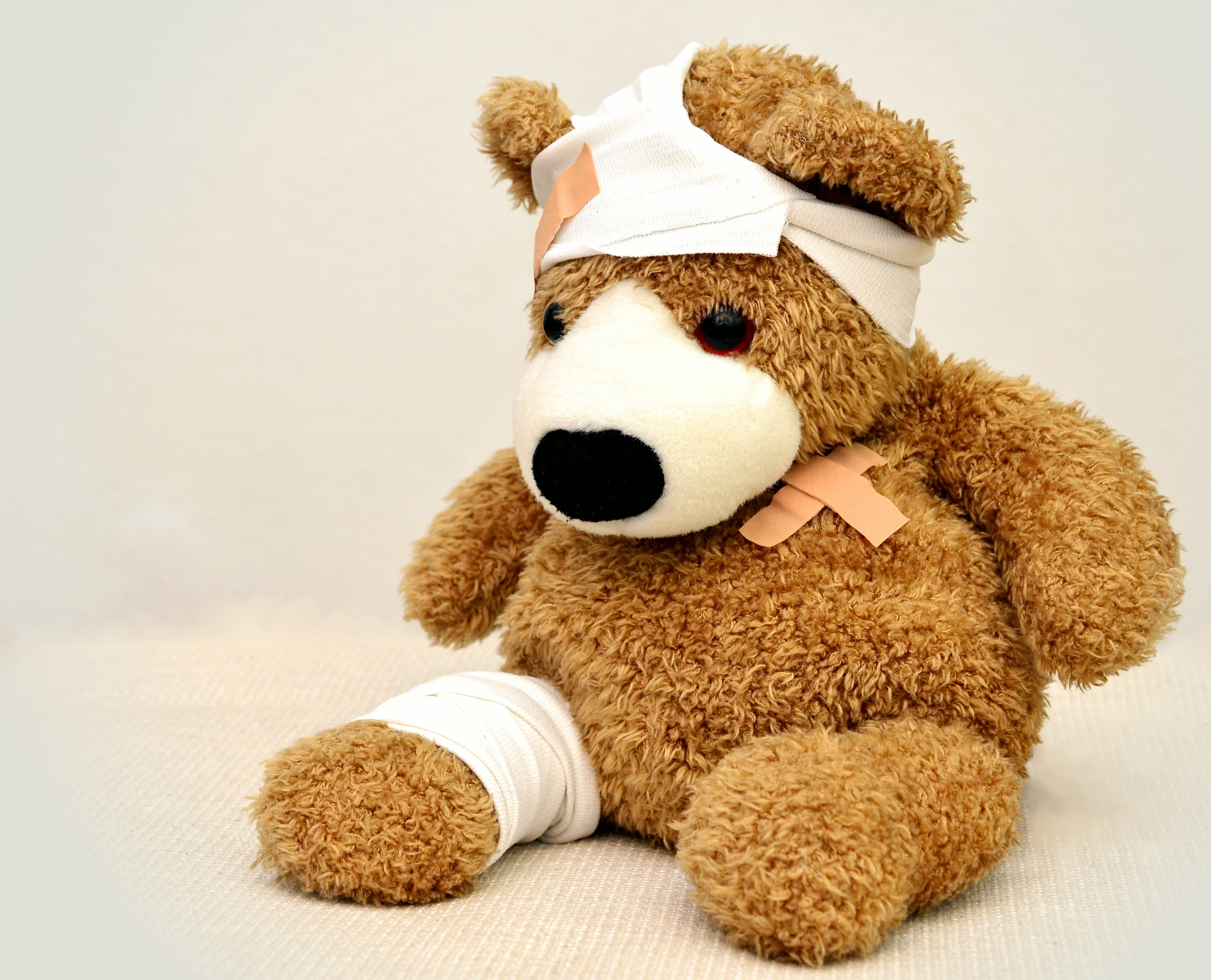 brown-and-white-bear-plush-toy-42230.jpg