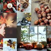 Gondolatok őszi fáradtság ellen
