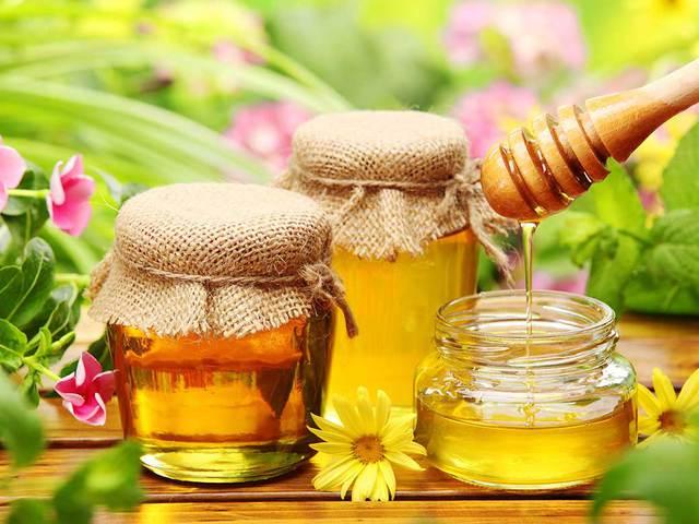 A tel reḥovi méhészet