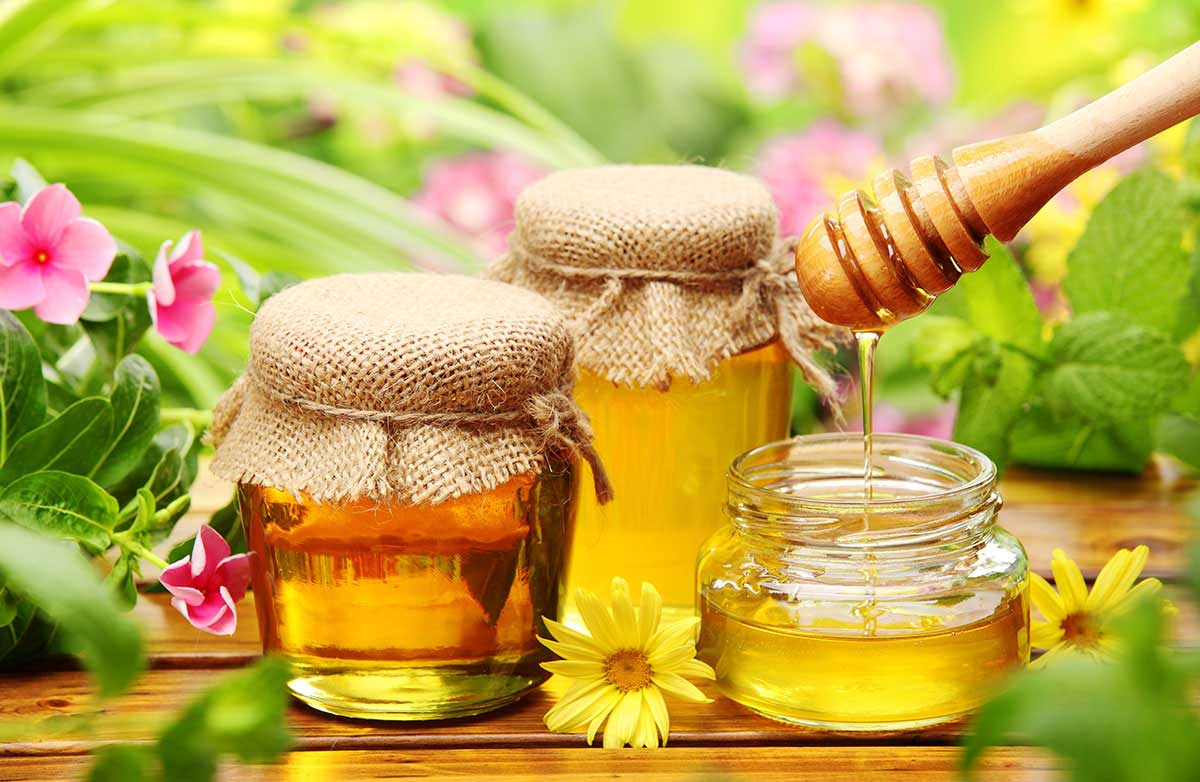 honey-in-nature.jpg