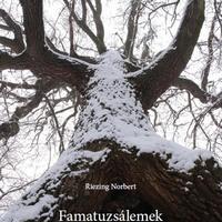 Famatuzsálemek a Vértes északi előterében - (Szeretném ezt a könyvet, írok a Jézuskának és jó leszek)