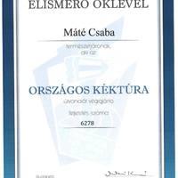 A bicskei Máté Csaba óriási teljesítménye