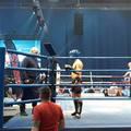 A bicskei főtörzs dobogóra lépett a TEK küzdősport gáláján a SYMA Csarnokban