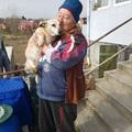 Még az ág is húzza Magdi nénit és sérült kutyáját