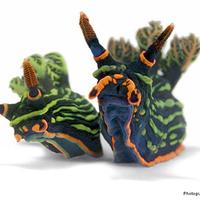 A csupaszkopoltyús csigák