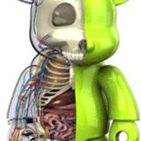 Anatómia... kicsit másképp