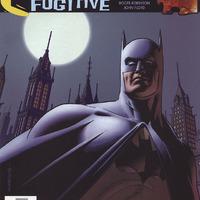 Gotham Knights 031 - Bruce Wayne Fugitive 17