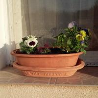 Ha széttörik a virágcserép, kerámia tál...