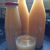 Őszibarack ivólé készítése lassú préssel, befőzése tartósítószer nélkül