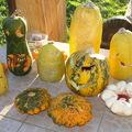 Alternatív zöldséghasznosítás: töklámpások Halloweenra