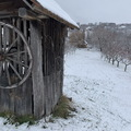 Pillanatnyi tél - havas garden tour