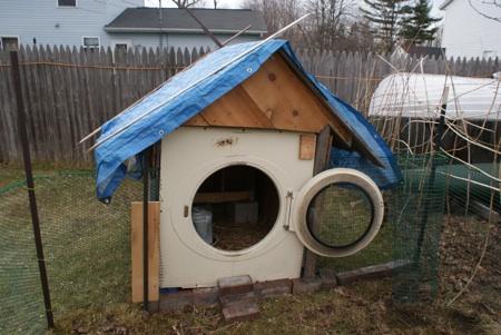 chicken-coop-door-automatic-1.jpg