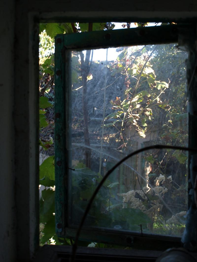 Udvari ablak belső helyiségből