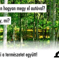 Túl sok a fa? Írtani kell! Fogjunk össze!