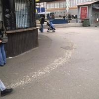 Galambürülék veszi körbe a jegypénztárat az Örs vezér terén