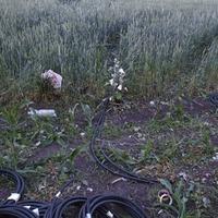 A Pilisben találták meg az ellopott HÉV kábeleket?