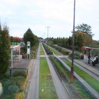 Buszsáv Ipswichben