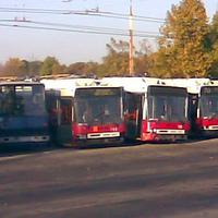 Lassan megtelik a busztemető