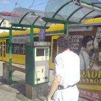 Rengeteg az alkalmatlan buszmegálló