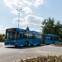 A buszvezető és az utasok segítettek az út mellett fekvőnek