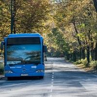 Közlekedés és sportolás a Margitszigeten