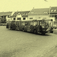 Elkeseredett utasok a 3-as busz vonalán