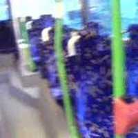 Bemutatjuk a használt buszokat