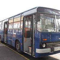 A 194-es busz nem vész el, csak átalakul