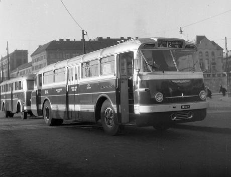 boraroster_1959_460.jpg