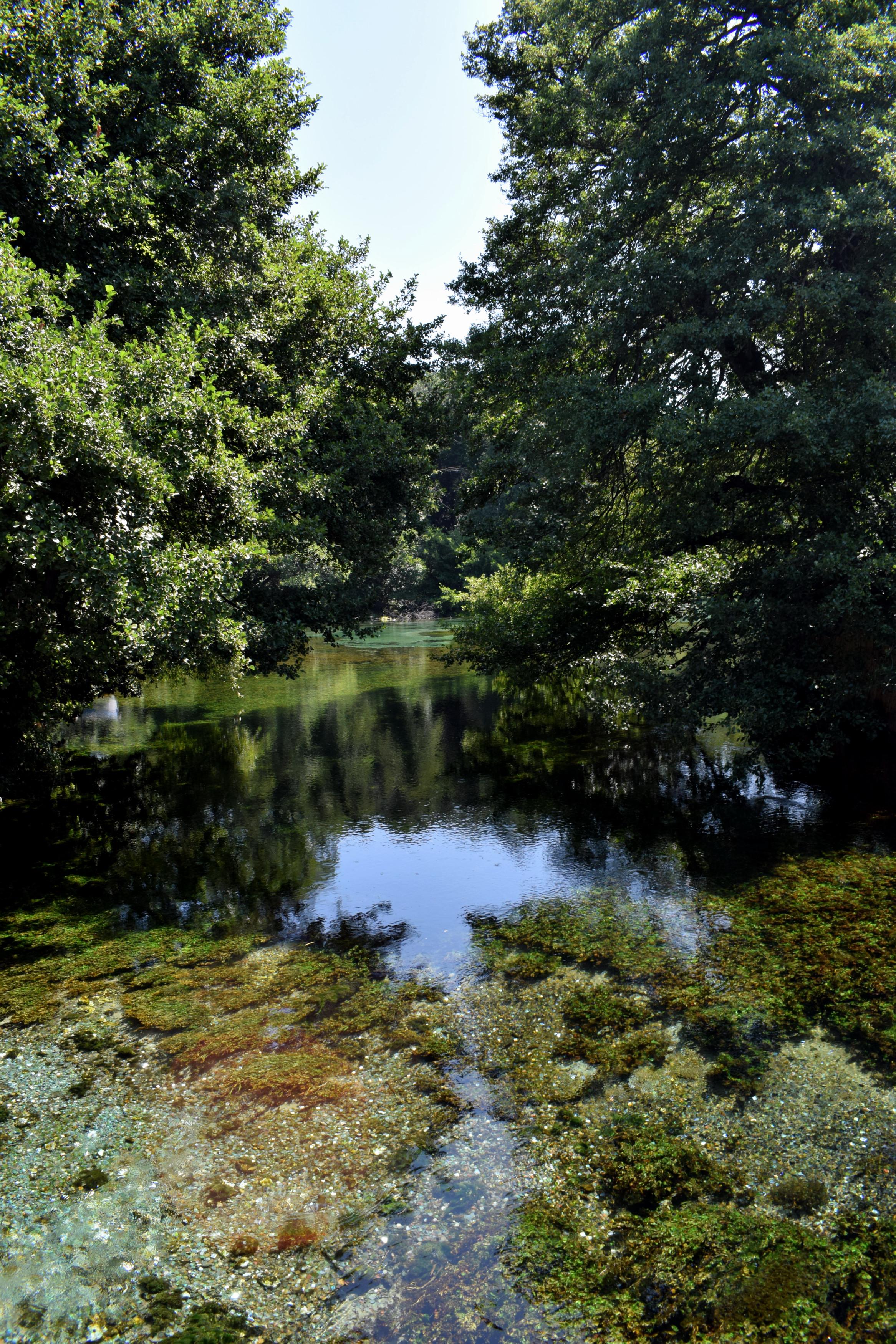 Saint Naumban található a tavat tápláló egyik legnagyobb folyó.